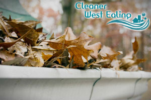 gutter-cleaners-west-ealing